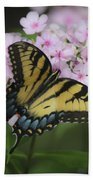 Soft Focus Tiger Swallowtail Beach Towel