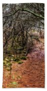 Soft Light In The Woods Beach Towel