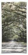 Soft Southern Day Beach Towel