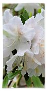 Soft White Azaleas Beach Towel