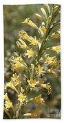 Soft Yellow Desert Flowers Beach Towel