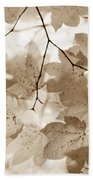 Softness Of Brown Maple Leaves Beach Towel