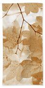 Softness Of Rusty Brown Leaves Beach Towel