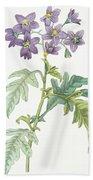 Solanum Quercifolium Beach Towel