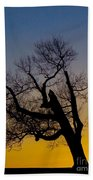 Solitary Tree At Sunset Beach Towel