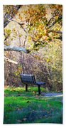 Solitude Under The Sycamore Beach Towel by Carol Groenen