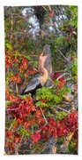 Song Of The Anhinga Beach Towel