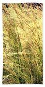 Sonoma Yellow Beach Towel