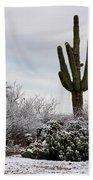 Sonora Desert Winter Beach Towel