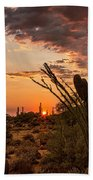 Sonoran Summer  Beach Towel