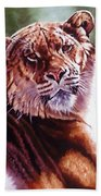 Sophie The Liger Beach Towel