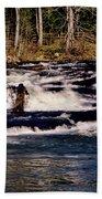 Soque Falls 005 Beach Towel