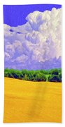 South Forty Beach Towel