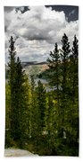 South Lake Through The Pines Beach Towel