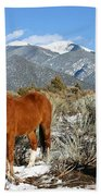 South West Ginger Beach Towel