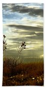 Southeastern New Mexico Beach Towel