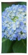 Southern Blue Hydrangea Blooming Beach Towel
