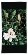 Southern Magnolia Bud And Bloom Beach Towel