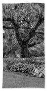 Southern Oaks In Black And White Beach Towel