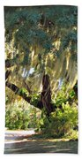 Southern Pathway Beach Towel