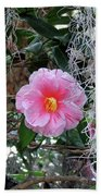 Southern Pink Camellia Beach Towel