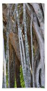 Southern Roots Beach Towel