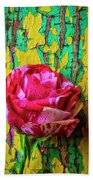 Soutime Rose Against Cracked Wall Beach Towel