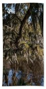Spainsh Moss Hanging Over Pond On Middleton Place Beach Towel