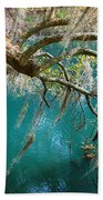 Spanish Moss And Emerald Green Water Beach Towel