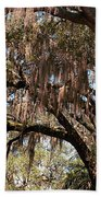 Spanish Moss Beach Sheet