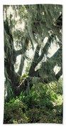 Spanish Moss In Motion Beach Towel