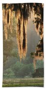 Spanish Moss In The Morning Beach Towel