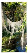 Spanish Moss Over The Swamp Beach Towel
