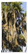 Spanish Moss  Beach Towel