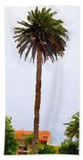 Spanish Palm Tree Beach Towel