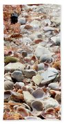Sparkling Shells Beach Towel