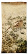 Sparrow In Winter I - Textured Beach Towel