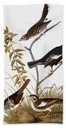 Sparrows Beach Towel by John James Audubon
