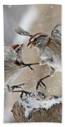 Sparrows Beach Towel