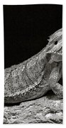 Speckled Iguana Lizard Beach Towel
