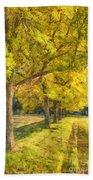 Spectacular  Fall Foliage Pencil  Beach Towel