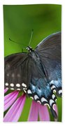 Spice Of Life Butterfly Beach Towel