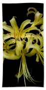 Spider Lily Beach Towel