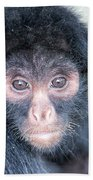 Spider Monkey Face Beach Towel