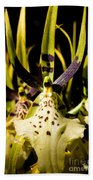 Spider Orchid Beach Towel