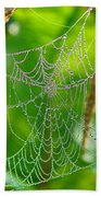 Spider Web Artwork Beach Towel