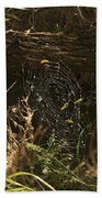 Spiders Web In Sunlight In Peters Canyon Beach Towel