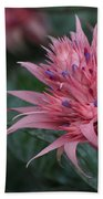 Spiky Pink Beach Towel