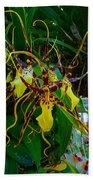 Spindly Orchid Beach Towel