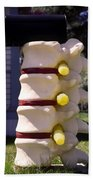 Spine Mailbox Beach Towel